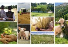 Die vielfältige oö. Landwirtschaft erhalten: Dafür sind alle gefordert.