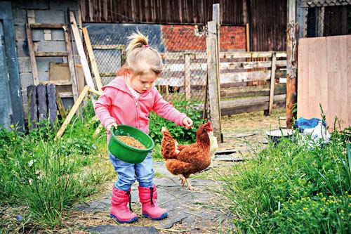 Am Bauernhof lernen die Kinder den Bezug zur Natur und erfahren