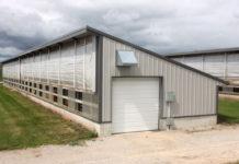 Auf der Double S Dairy wurden 2011 vier solche Kälberställe errichtet. In jedem Stall stehen in einer Reihe 40 Kälberboxen