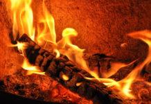 Gerade in Österreich mit ca. 50  Prozent Waldanteil bietet sich die energetische Nutzung von Biomasse an.