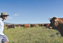 Farmer Angus - vom Investmentbanker in London zum Farmer in Südafrika