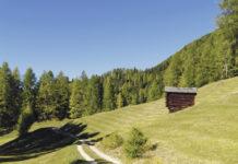Älplerinnen und Älpler leisten durch ihre Arbeit einen wichtigen Beitrag zur Attraktivität der Berglandschaft.