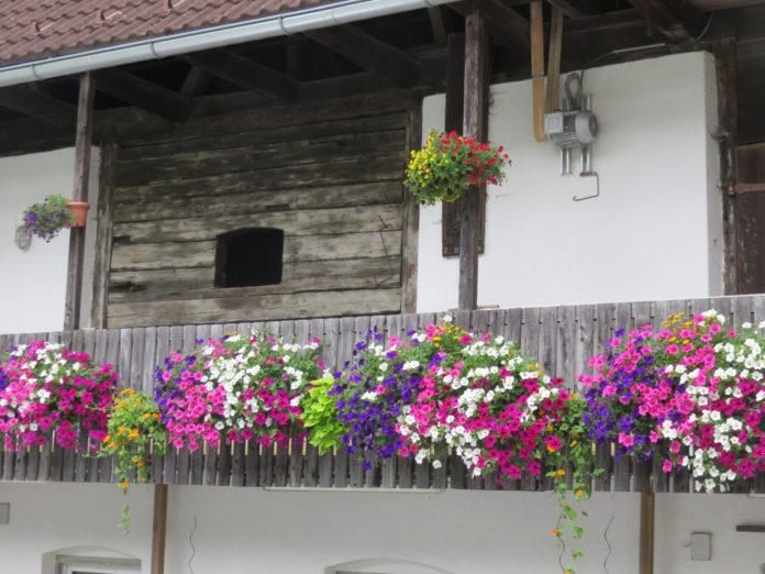 Blumenschmuck auf einem Bauernhof
