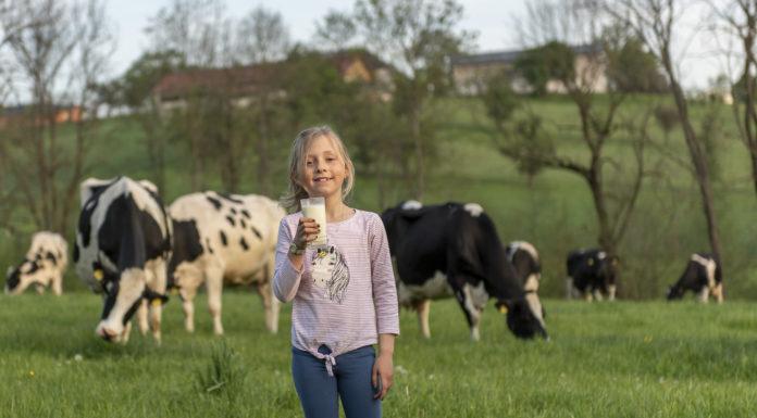 Die Coronakrise bringt die Milchwirtschaft in Bedrängnis. Ein Umdenken der Konsumenten orten Josef Geisler und Josef Hechenberger bei der Selbstversorgung im eigenen Land. Die Tiroler Landwirtschaft gewinnt an Bedeutung.
