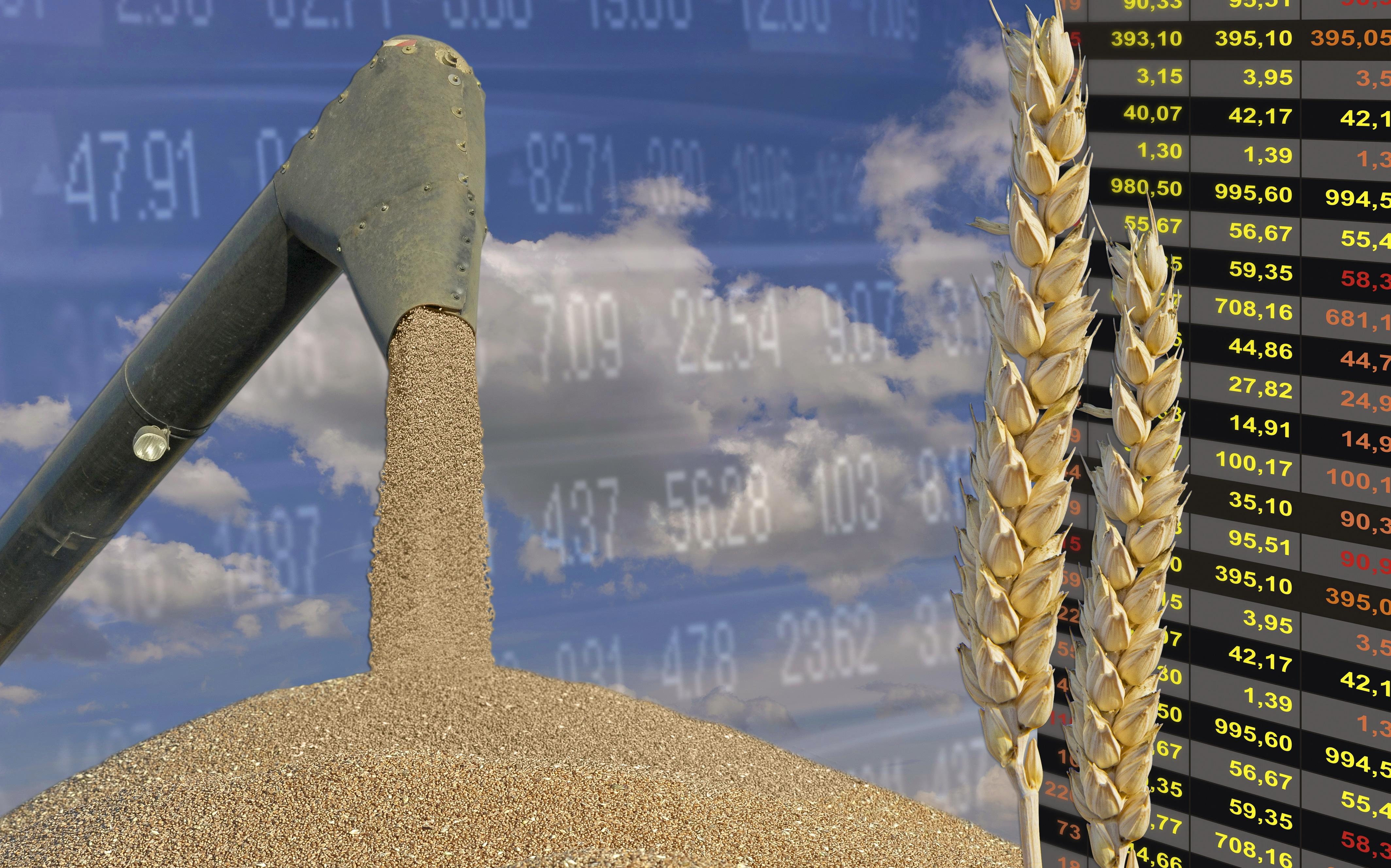 Börse weizen Getreidepreise
