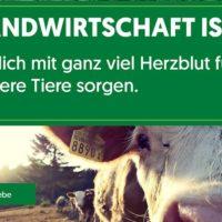 Suche langfristige und verantwortliche Hofstelle auf Milchvieh-Hof/Betrieb in ganz Österreich